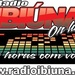 Rádio Ibiúna Logo