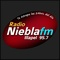 Radio Niebla FM 95.7 Logo
