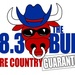98.3 The BULL - WCEF Logo
