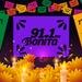 Bonita FM 91.1 - XHECM Logo