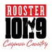 Rooster 101 Logo