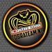 Cobra Team Radio Logo