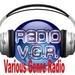 Radio VGR Logo
