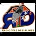 Radio Tele Dessalines Logo