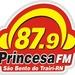 Rádio Princesa 87.9 Logo