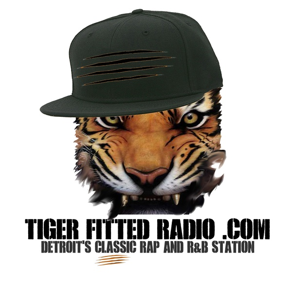 Tiger Fitted Radio