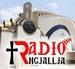 Radio Ngjallja Logo