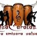 Salsa Caracas Logo