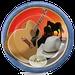 Sertaneja Caipira Raiz Logo