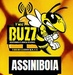The Buzz Assiniboia Logo