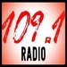 109.1 Da View Radio Logo
