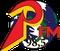 Positiva 98 FM Logo