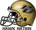 PG Hawk Network Logo
