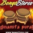 Bongó Stereo