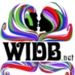 WIDB.NET The Remedy Logo