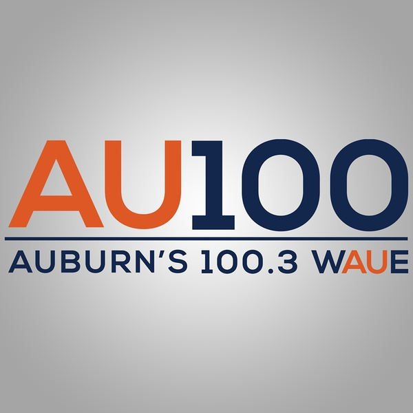AU 100 - WAUE