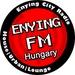 Enying FM Logo