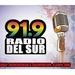 Radio Del Sur 91.9 Logo