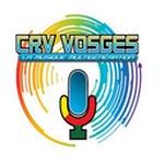 Crv Vosges Logo