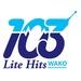 WAKO - WAKO Logo