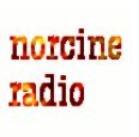 Norcine Radio