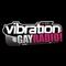 Vibration - Gayradio! Logo