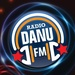 Danu Radio 105.1 - WNYZ-LP Logo