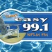 Today's Easy 99.1 - WPLM Logo