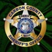Carbon County Sheriff and Fire Dispatch Logo