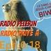 Radio Pelerin Logo