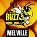 The Buzz Melville Logo