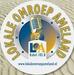 Lokale Omroep Ameland Logo