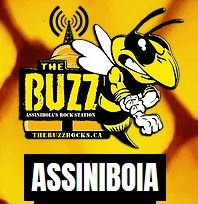 The Buzz Assiniboia