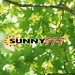 Sunny 97.7 - WFDL-FM Logo