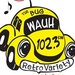 102.3 The Bug - WAUH Logo