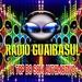 Web Rádio Guaibasul Logo