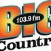 94.5 KZBI Logo