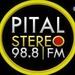 Pital Stereo 98.8 FM Logo