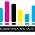 Radio Streaming Nabire Logo