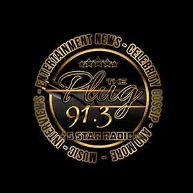 91.3 The Plug Radio
