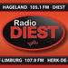 Radio Diest Logo