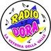 Radio Dora - 88.0 FM Logo