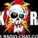 Punk Radio Logo