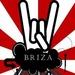 Radio Briza Logo