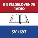 Bijbelgelovende Radio Logo