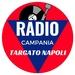 Radio Campania Logo