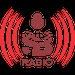 ShalomBeats Radio - Hindi Logo