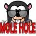 KCID The Mole Hole Logo