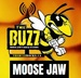The Buzz Moose Jaw Logo