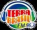 Rádio Terra Brasil USA Logo